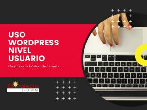 Mini Tutoría WordPress y Elementor Pro   Nivel ya tengo mi web y ¿ahora qué hago?